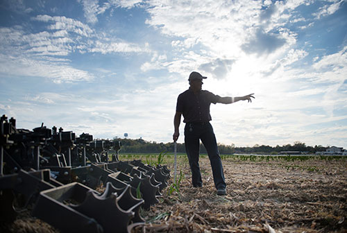 For Mississippi State farms, hands-on work continues