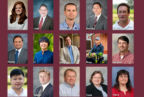 MSU ag faculty, staff and students honored for excellence