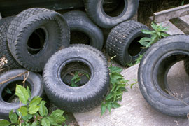 old tires stacked on pavement