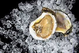 oysters with crushed ice on black background