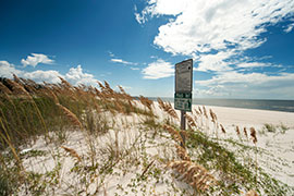 beach dunes with sign and blue skies