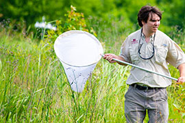 student in field with butterfly net
