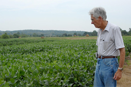 scientists looking over soybean crop